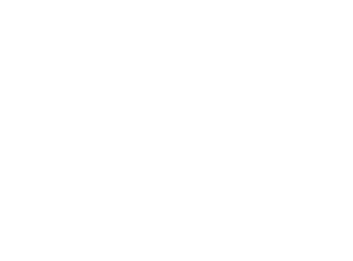 Lynn Messer, P.C. Law Office